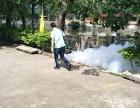东莞灭白蚁公司 杀虫灭鼠 灭臭虫一次清除不留后患