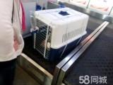 深圳到全国宠物空运,随机托运 检疫证代办 火车托运全国连锁