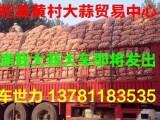 常年大量供应杞县印尼蒜 拔米蒜