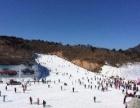 蓟县蓟洲国际滑雪场一日游