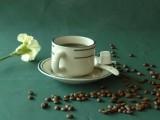 华隆咖啡 华隆生态咖啡园