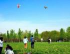 春游去哪儿玩露营 烧烤 放风筝这个农家乐都有!