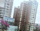 游仙镇中心新川瑞逸东郡 商住公寓 170平米