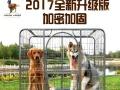 全新大型狗笼出售