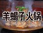羊蝎子火锅加盟费用
