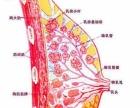 无痛催乳师上门解决乳房硬块、胀痛、乳腺炎、少奶