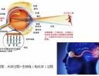 杭州健视加近视恢复眼镜 近 弱视患者的福音来啦!