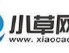 企业网站建设-企业网站制作-通化本地服务-小草网络