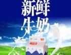 【光明LOOK鲜酸奶】加盟/加盟费用/项目详情