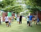 东莞公司年会地点推荐 部门活动 周边出行游玩