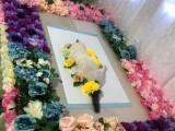 宠物殡葬服务 宠物火化服务