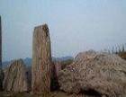 泰山园林石,泰山奇石,美观大方