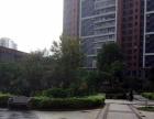 桥南片区,百捷金街 上悦城 新加坡城 交通便利 环境优美