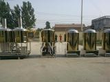 300升小型啤酒设备 精酿啤酒设备 糖化发酵设备
