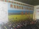 环青海湖自行车租赁40元