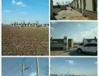 青山镇永胜小学场地出租可做教室和厂房
