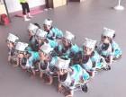 苏州科技城艺术类教育美术素描舞蹈书法皆有体验