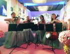 晚会活动会展外籍模特 乐队 节目表演 舞蹈 弦乐四重奏 歌手