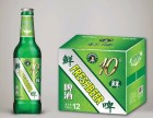扎啤啤酒全国招商