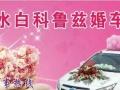 沂水王皓婚车俱乐部,白科鲁兹婚车队