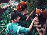 暑假特惠畅玩港澳三天两晚海洋公园 迪士尼 双园游 只需780元