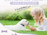 廣州寵物辦理托運