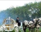北京房山美薇婷生态草坪婚礼 婚车 马车