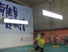 北京体育大学专业羽毛球教练