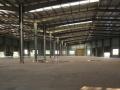 5000平米标准钢结构厂房仓库出租