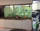 深圳鱼缸订做,送鱼缸上门安装,包月护理鱼缸,维修水泵