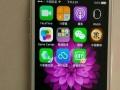 苹果5手机低价出售白色的