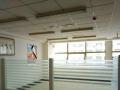 240平大通间,有单独的经理室,专业写字楼位置好聚财的好地方