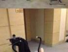 潍坊新富健身会所+游泳+瑜伽+羽毛球+健身+乒乓球