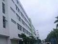 竹岐高速出口标准框架结构独栋厂房出租,每平仅15