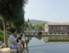 五星湖生态休闲园 昆明农家乐 精彩周边游