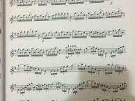 郑州中原区学钢琴小提琴吉他架子鼓声乐琵琶古筝