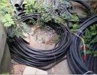 江门江海区电力电缆回收多少钱一米
