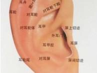 北京耳针 康复理疗师 针灸保健师 医药商品购销员培训学校