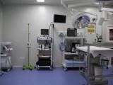 来杭州宠福鑫嘉美动物医院感受高效 精准的医治