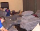 专业办公楼地毯清洗、阿姨派送、沙发清洗、办公椅清洗