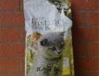 出售超萌英短蓝猫宝宝 可爱黏人 价格实惠