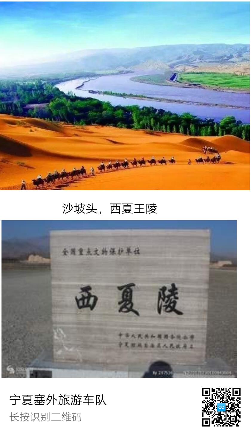 宁夏塞外旅游车队
