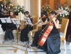 珠海器乐公司演出 小提琴竖琴钢琴 商演琵琶古筝表演