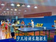 白云区儿童乒乓球培训 成人乒乓球训练 乒乓球馆租场 器材销售