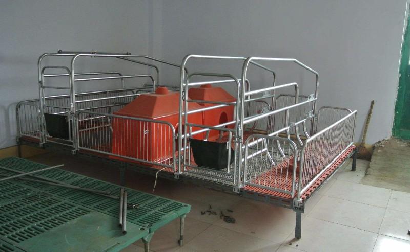 亚冠专业生产母猪产床分娩栏价格便宜