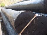 河北生产防腐油木杆实体厂家量大优惠