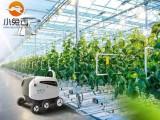 南宁商城开发智慧农业网站商城开发公司
