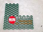 (50mm)南通厂家直销星级塑料植草格多规格价廉质优绿化环保专用