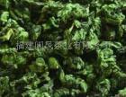 闽凤茶业招商加盟