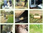 惠州博罗防治白蚁中心,多镇设点,除虫灭蚁彻底药效持久安全环保